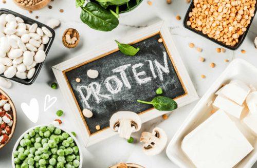חלבון מהצומח